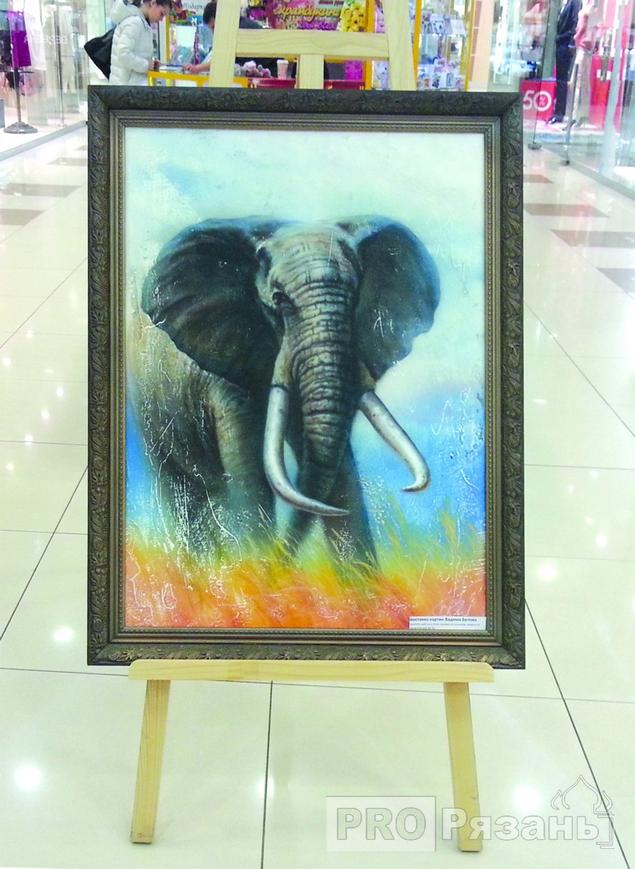 Почему воришка стащил кота, а не африканского слона, остается загадкой. Фото Александра Ефанова.