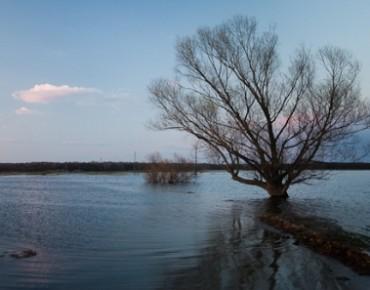 Фото с сайта ГУ МЧС по Рязанской области