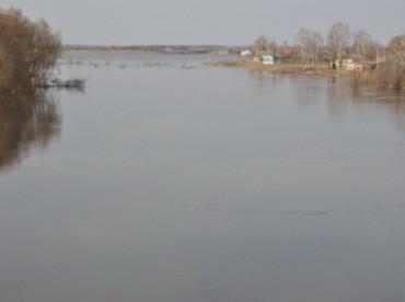 Фото с сайта УМЧС по Рязанской области