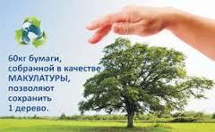 спаси дерево