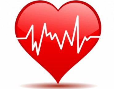 heartbeat_312284